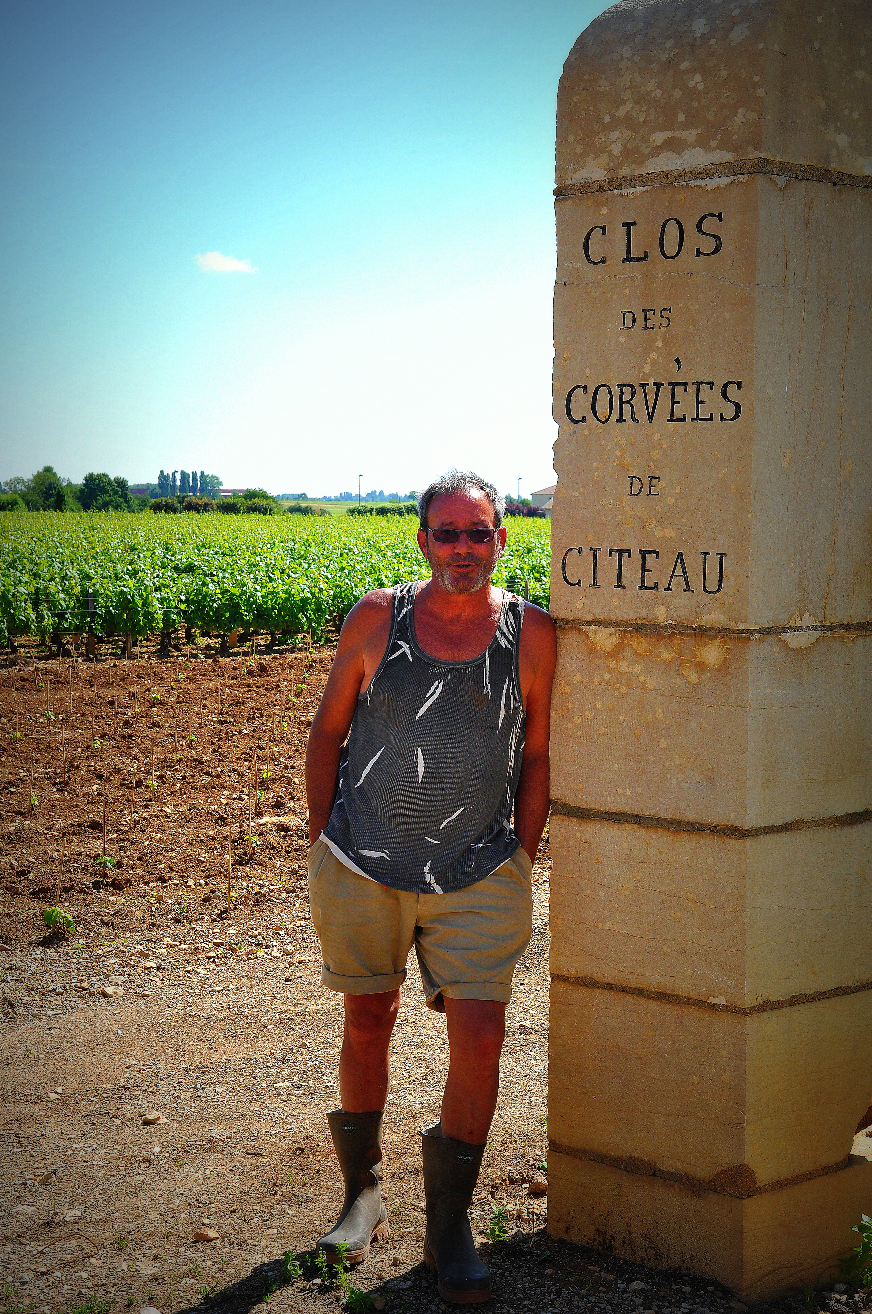 la viticulture est aussi une question de fierté du terroir ainsi travaillé.