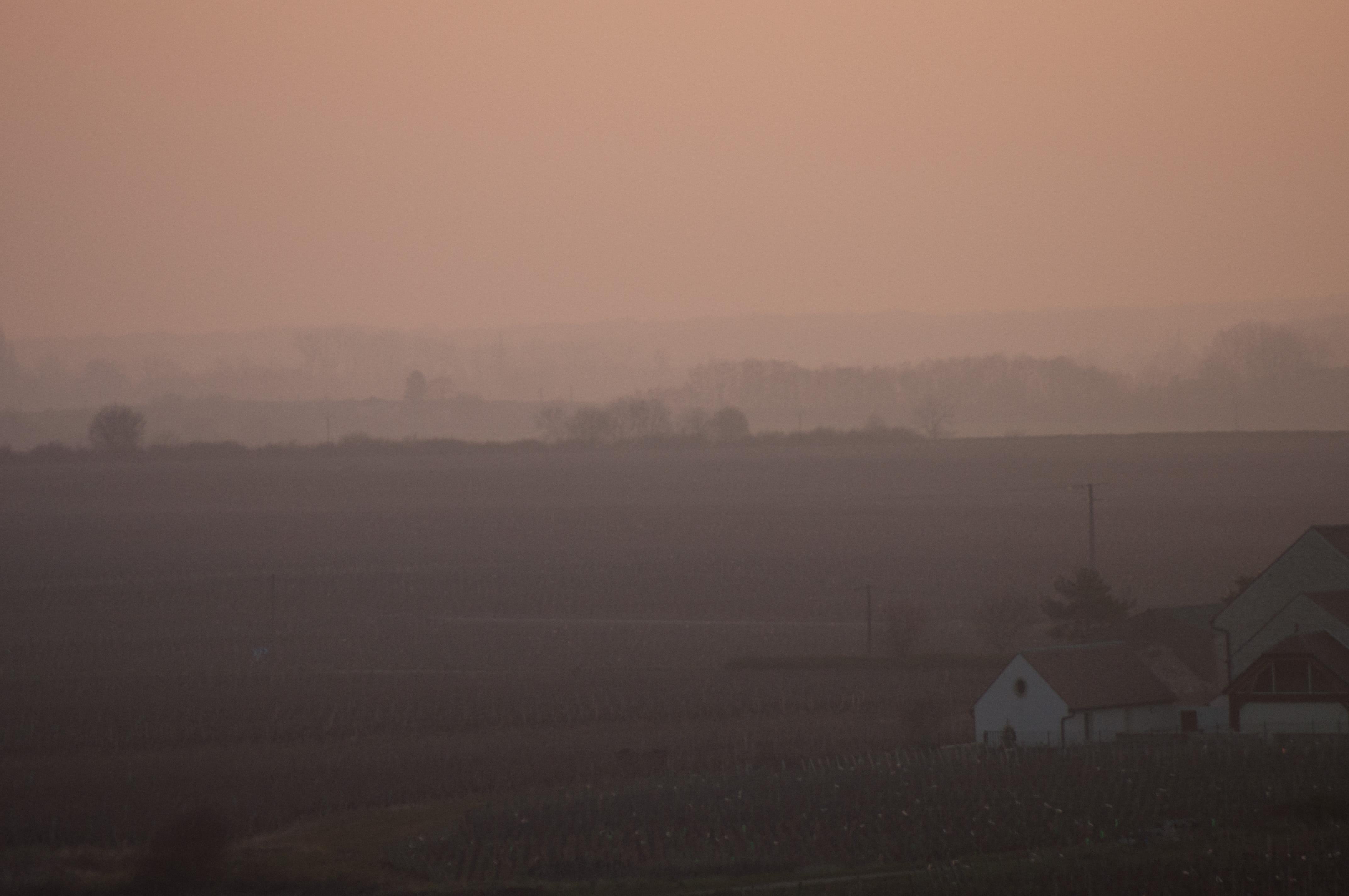 Vignes et nationale dans le brouillard...